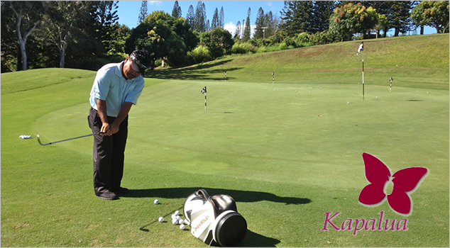 Post image for Get World Class Instruction at the Kapalua Golf Academy