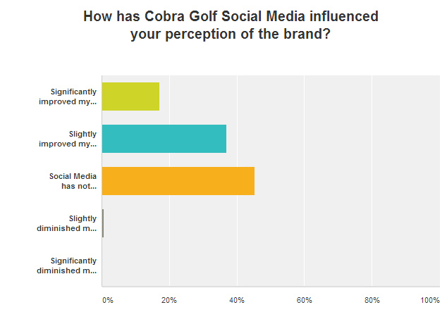 14 - cobra social media influence brand perception