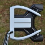 TaylorMade DDL-2