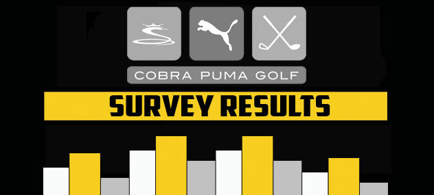 Post image for Cobra Golf Brand Survey – The Results