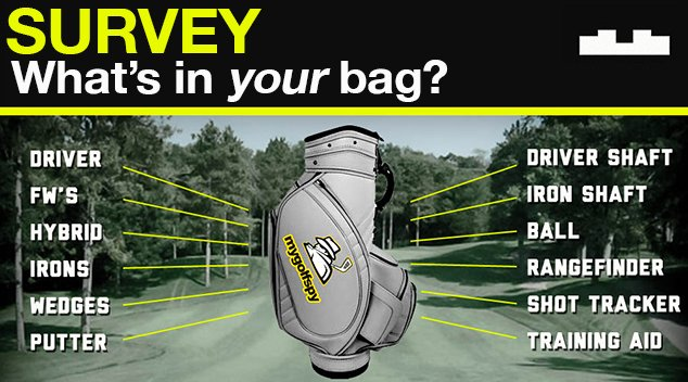 Survey Results – WHAT'S IN YOUR BAG (Wedges and Putters)