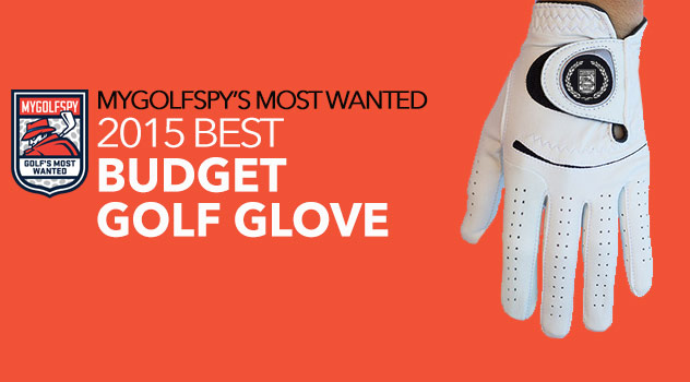 2015 Most Wanted Budget Golf Glove