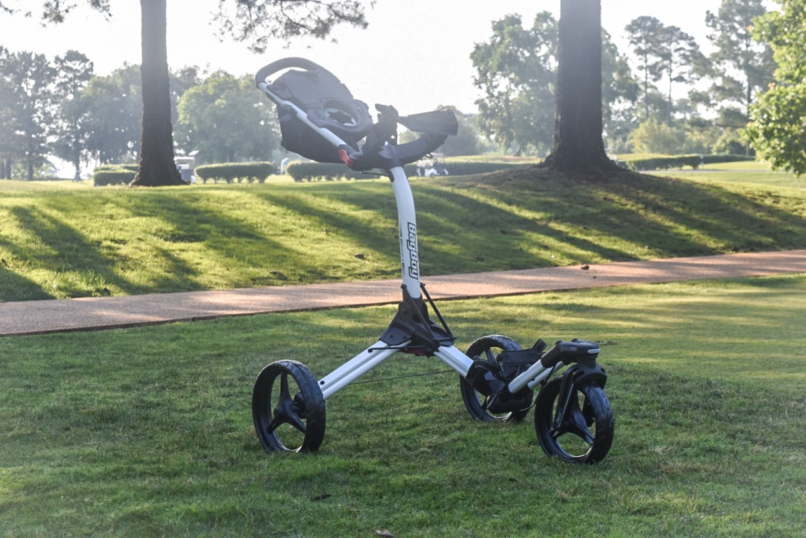 Best Push Carts of 2017